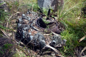 crashed plane, Horn Island